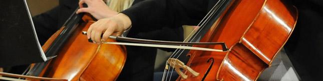 Burnside Symphony Orchestra